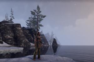 The Elder Scrolls Online, Video games