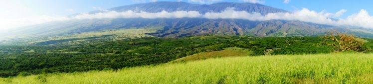 Hawaii, Maui, Tropical forest, Tropics, Palm trees, Beach HD Wallpaper Desktop Background