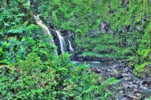 tropical water, Tropical forest, Hawaii, Isle of Maui, Maui, Palm trees, Beach, Waterfall