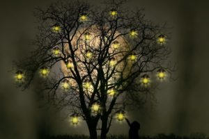 children, Fantasy art, Nature, Trees, Night, Moon, Lantern, Lights, Grass, Silhouette, Photoshop, Branch