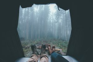 tents, Trees, Vacations, Relaxing