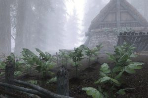 The Elder Scrolls V: Skyrim, Environment, Farm, Mist, Forest