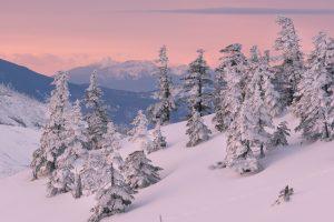 snow, Nature, Landscape, Winter