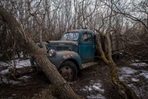 trees, Winter, Car, Vehicle, Wreck