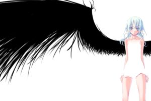 wings, White