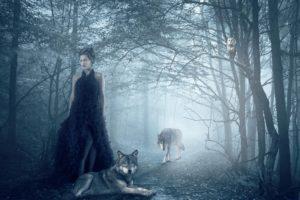 isadora, Vilarim, Girl, Wolf, Owl, Forest, Wolves, Gothic, Goth, Loli, Mood