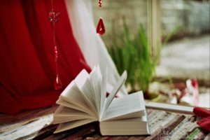 bokeh, Book