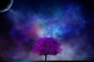 tree, Planet, 3d, Art, Nebula, Sky, Sci fi, Planet, Moon, Stars, Blossom