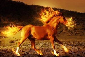 horse, Fire, 3d, Art, Psychedelic, G
