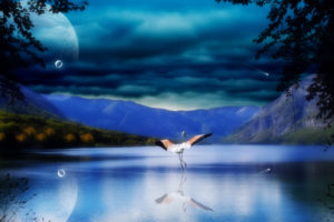 cg, Digital, Art, Manipulation, Bubbles, Dream, Mood, Birds, Flight, Flamingo, Nature, Lakes, Mountains, Reflection, Sky, Clouds, Autumn, Fall, Trees, Leaves, Forest, Shore