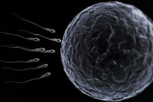 sperm, Abstraction, Abstract, Bokeh, Life, Sex, Sexual, Medical, Dna, Male, Man, Men, 1sperm, Mating, Psychedelic, Egg, Cell, Eggs, Swim, Swimming, Vector