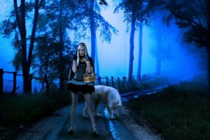 wolf, Night, Fantasy, Mood, Girl, Girls, Women, Wolves, Road, Forest, Gothic