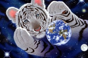 tigers, William, Schimmel, Art, Sci, Fi, Earth, Space, Planets, Stars