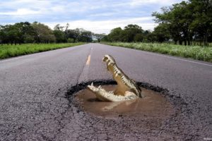 hole, Pot, Roads, Crocodiles
