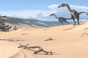 velociraptor, Dinasaurios, Reptiles, Animales