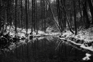 black, White, Monochrome, Nature, Landscapes, Trees, Forests, Rivers, Streams, Water, Reflection, Dark, Winter, Snow, Seasons