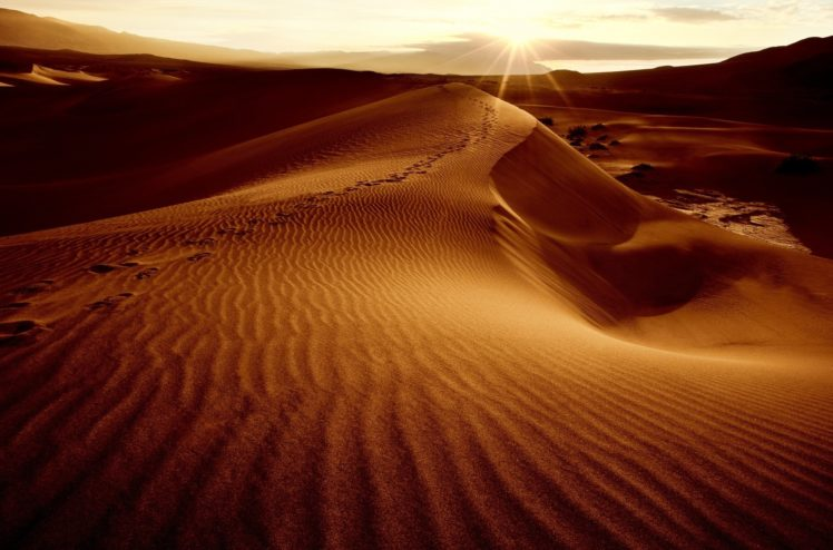 desert, Sand, Dunes, Dunes, Sun, Sky, Landscape HD Wallpaper Desktop Background