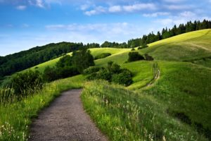 path, Way, Landscape, Hills, Mountains, Forest, Green, Nature, Spring, Sky, Trees