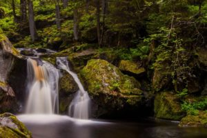 waterfall, Rock, Stone, Forest, River, Stream, Green, Trees, Nature