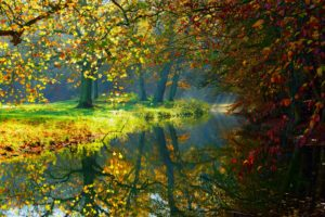 autumn, Lake, Water, Nature, Trees, Fall, Woods, Forest, Autumn, Splendor, Leaves