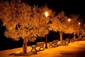 city, Aeyaey, Street, Benches, Light, Lights, Bench, Night, Mood