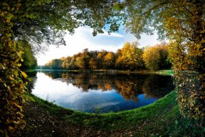 landscapes, Trees, Autumn,  season , Leaves, Pond, Frames, Lakes