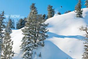 mountains, Snow, Trees, Snowboarding