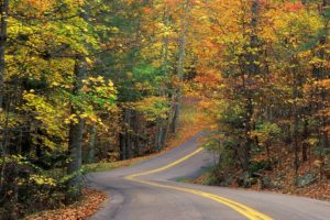 autumn, Roads, Colors
