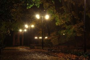 landscapes, Lamps, Lamp posts, Benches, Lights, Night, Pathways, Roads, Lanes, Autumn, Fall, Seasons, Trees, Leaves, Moo