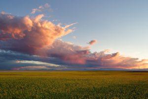 nature, Cloud, Sunset, Forest, Landscape, Fog, Field, Ultrahd, 4k, Wallpaper