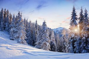 nature, Landscapes, Trees, Forest, Mountains, Winter, Snow, Seasons, Sun, Sunlight, Sky, Clouds, White, Cold