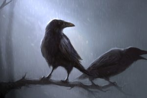 animals, Birds, Crows, Ravens, Poe, Storm, Rain, Trees, Forest, Moon, Moonlight, Art, Artistic, Mood