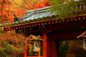 japanese, Asian, Oriental, Architecture, Buildings, Houses, Wood, Teak, Artistic, Roof, Tiles, Nature, Trees, Forest, Autumn, Fall, Seasons, Leaves, Color