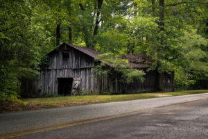 world, Roads, Architecture, Buildings, Ruin, Decay, Abandoned, Trees, Forest, Leaves