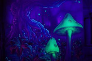 fantasy, Landscapes, Art, Mushroom