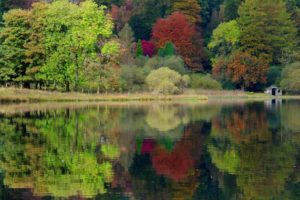reflection, Water, Shore, Trees, Forest, Landscapes, Autumn, Fall, Shack, Rustic, Buildings