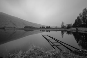 dam, Black, White, Nature, Landscapes, Lakes, Water, Reflection, Sky, Trees, Grass, Shore, Beaches
