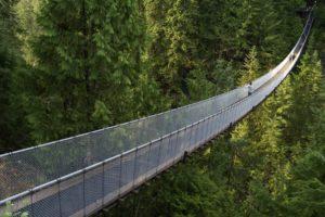 people, Nature, Architecture, Bridges, Trees, Forest, Woods, Gorge, Landscapes