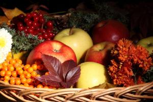 fruit, Still, Life, Apples, Berries, Berry, Nuts, Food, Leaves, Basket