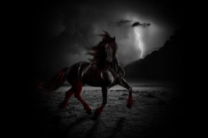 black, And, Red,  , Horse, Thunderstorm, Lightning