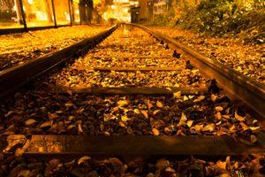 autumn, Trees, Nature, Landscape, Leaf, Leaves, Railroad, Train, Tracks