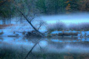 landscape, River, Fog, Forest, Trees, Reflection