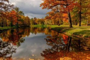 trees, River, Forest, Leaves, Clouds, Park, Water, Sky, Nature, Autumn, Reflection
