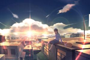 animal, Cat, City, Clouds, Glasses, Original, Scenic, Skirt, Sky, Sunset, Wack