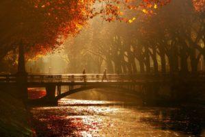 autumn, Tree, Leaves, Beauty, Nature, Landscape, Bridge, Peoples, River