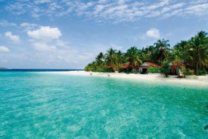 maldives, Island, Sea, Palm, Trees, Beach, Landscape, Ocean, Beaches