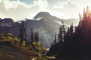 trees, Mountains, Landscapes, Sky, Clouds, Forest