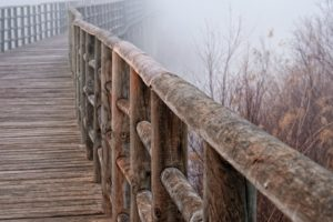 fog, Tree, Beauty, Landscape, Winter, Bridge