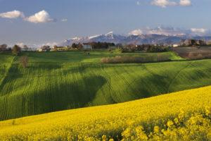 mountain, Village, Landscape, Field