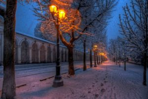 nature, Park, Street, Road, Path, Walk, Winter, Snow, Lights, Trees